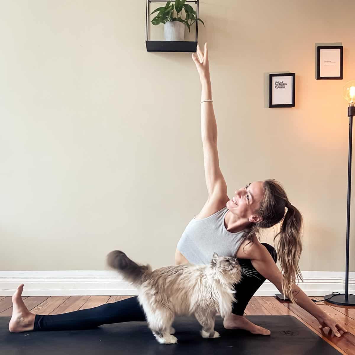 yoga dance flow hamburg